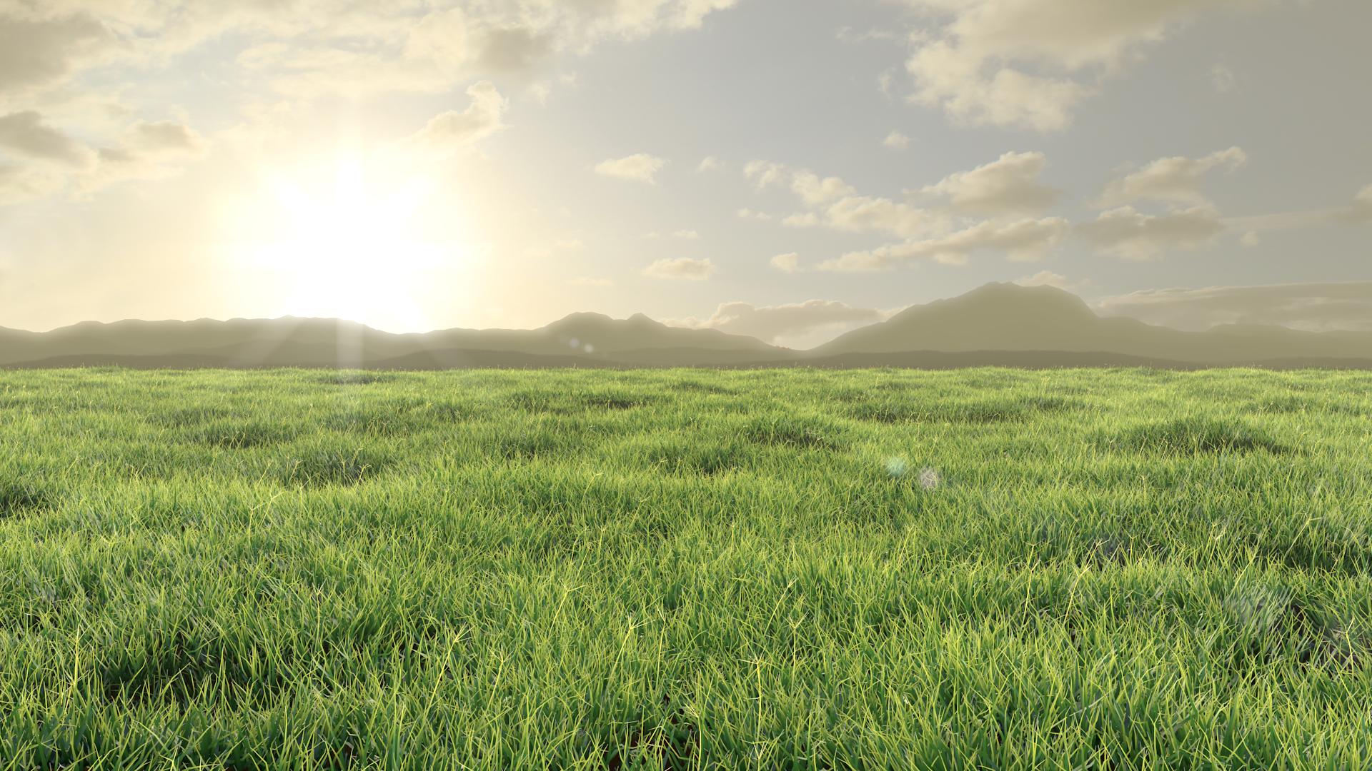 Sunny, grassy plain.