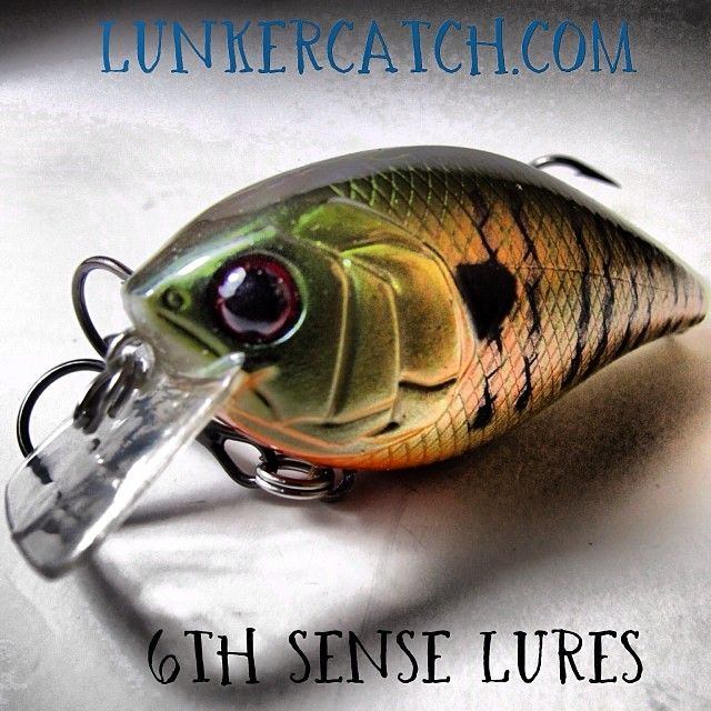 6th Sense Lures on Lunkercatch.com - Crank with the best - Now available on Lunkercatch.com #lunkercatch #6thsenselures #bassbaits #bassfishing #crankbaits #squarebills #instaphoto #instagram
