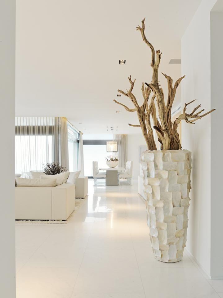 whites prachtige pot met takken de oceaan aardwarmte modern herenhuis luxe villa