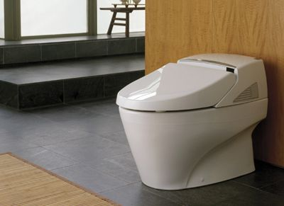 What S The Most Expensive Toilet In The World With Images