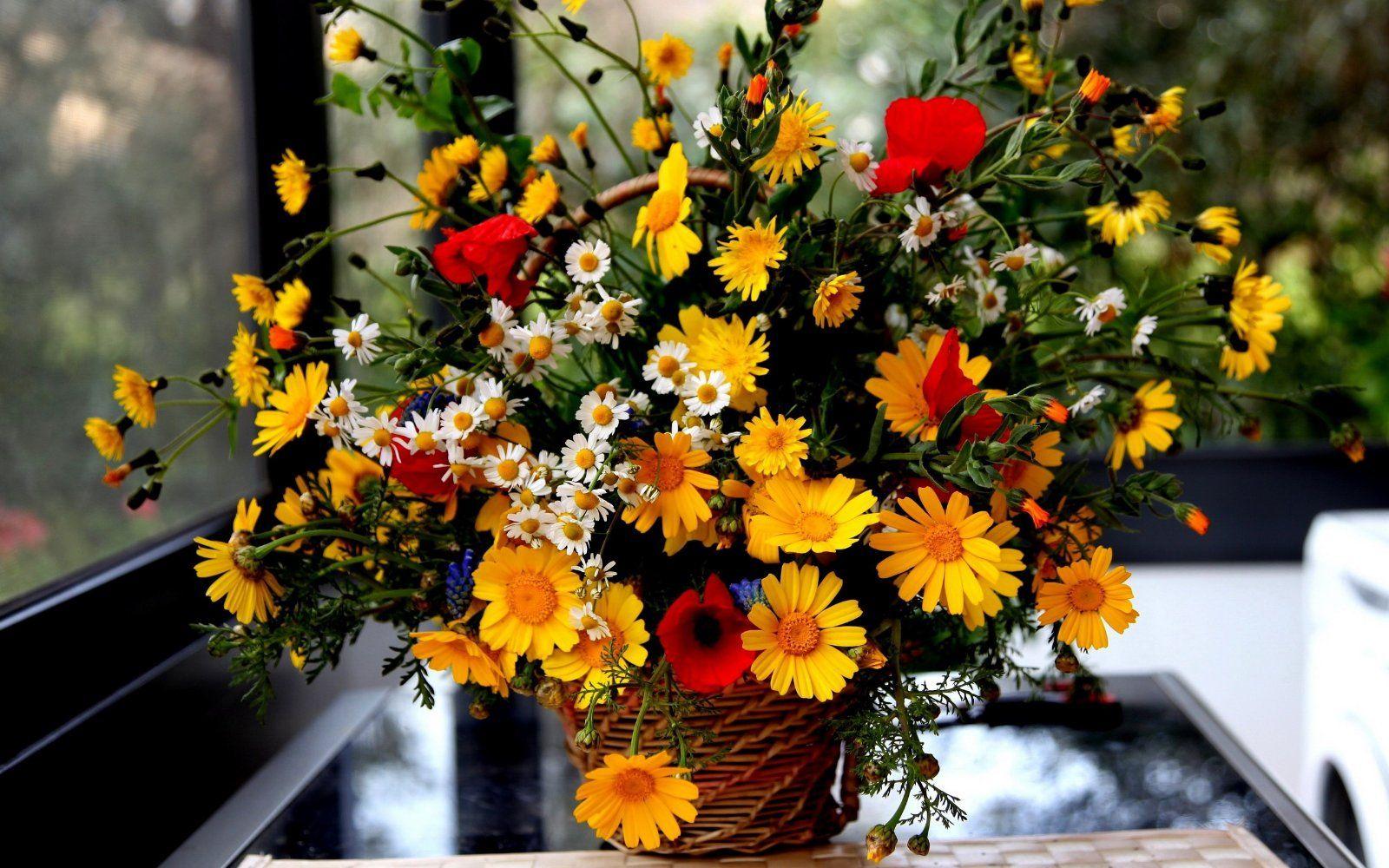 корзина цветов обои на рабочий стол: 16 тыс изображений ...