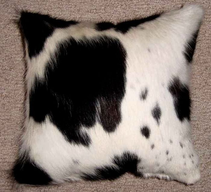 Everyone Needs Alittle Animal In Their Lives Hollywood Love Rugs Black And