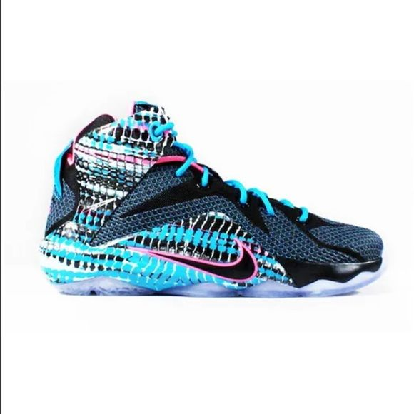 800d78748cca Nike Lebron XII Chromosomes  100% Authentic with UPC code. (New With Box).  Men s Size  11.5 Nike Shoes