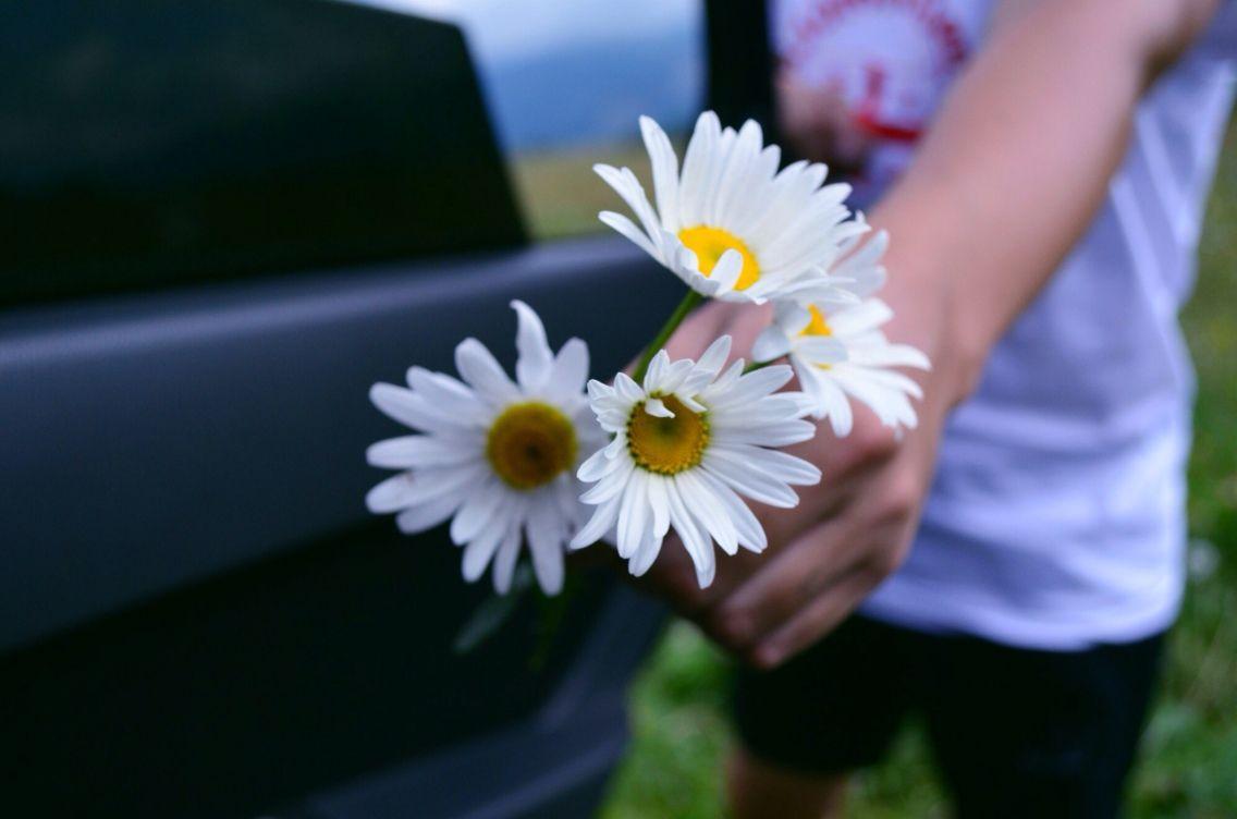 Best flower :)