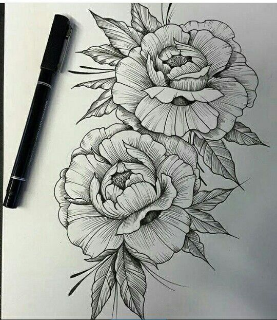 Pinterest Linell Tattoo Drawings Flower Tattoos Peony Drawing