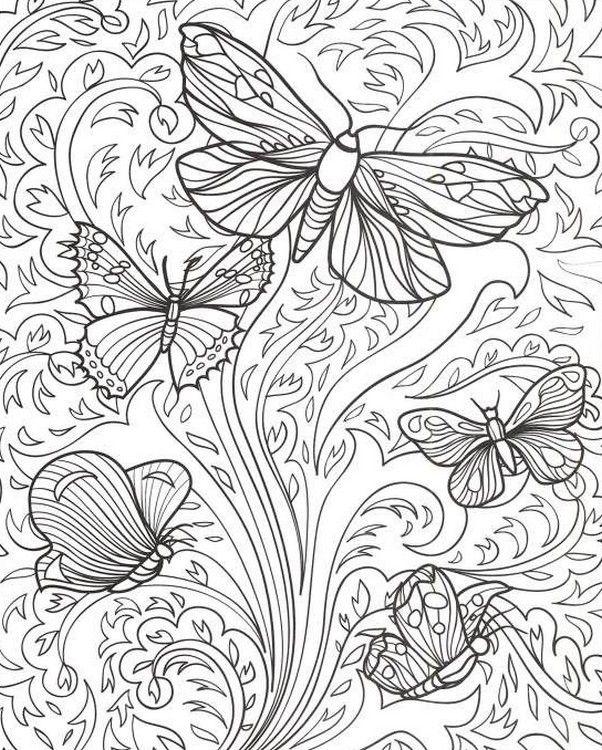 Dibujos Para Colorear Para Adultos Mariposas Con Imagenes