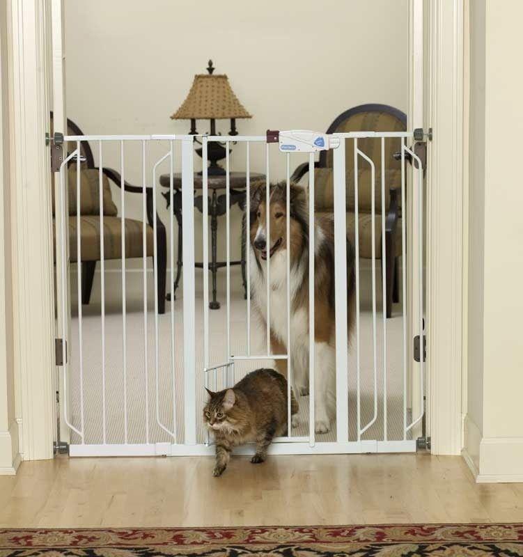 Reja puerta para perros y gatos nuestro primer depa for Puerta para perros