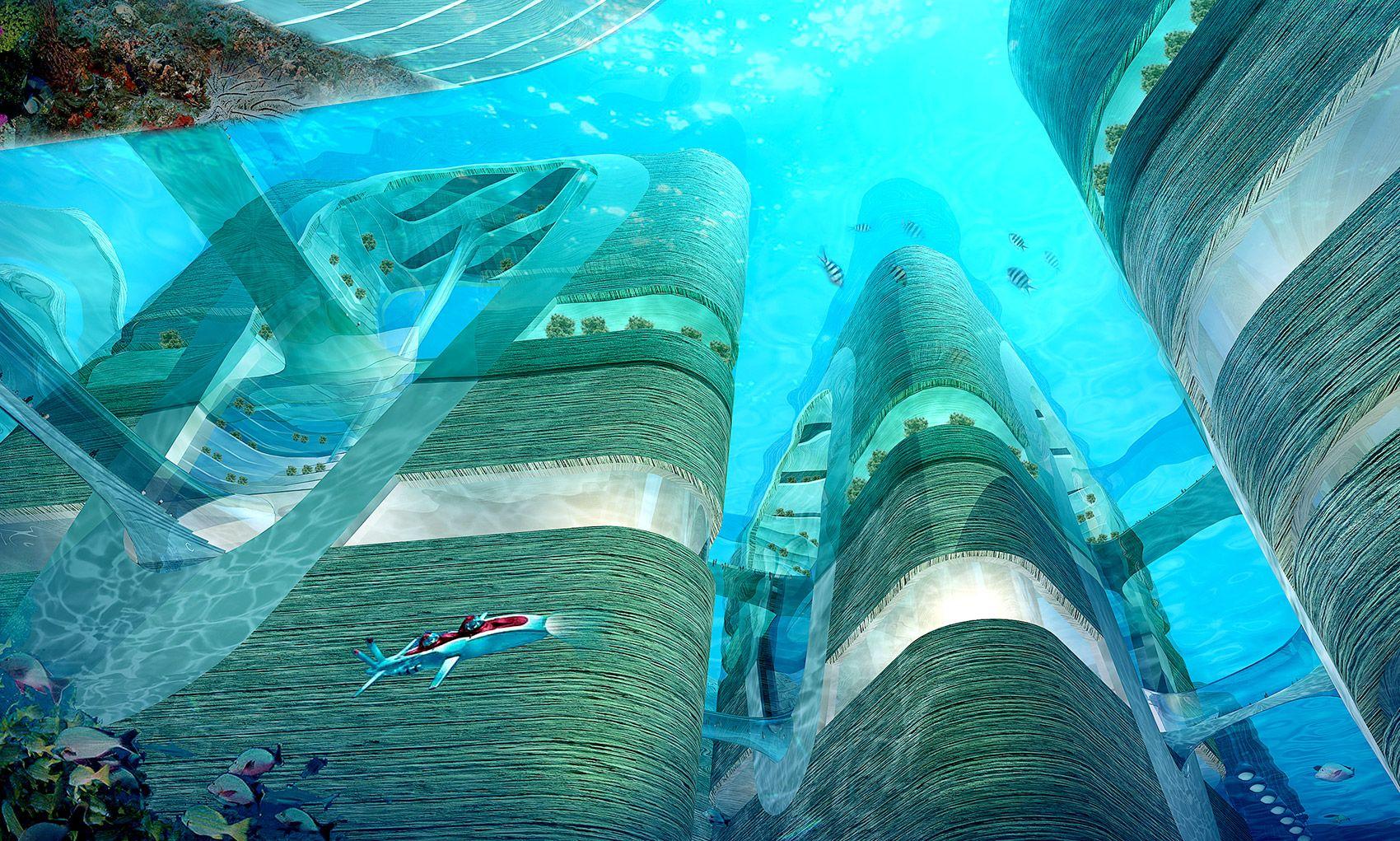 Vingt mille lieux sur les mers : comment les architectes voient la on