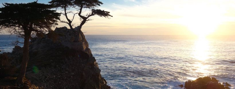 Pebble Beach, 17 Mile Drive, California