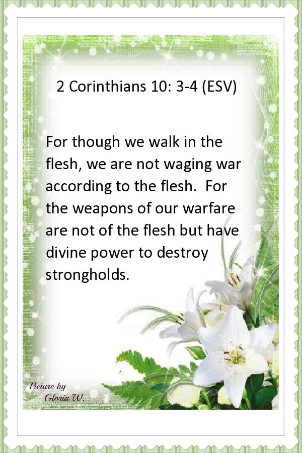 2 Corinthians 10: 3-4 (ESV)   New Testament - Matthew - 2