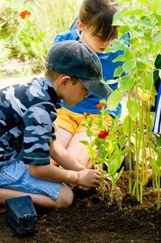 Image result for denver botanic gardens mordecai children's garden