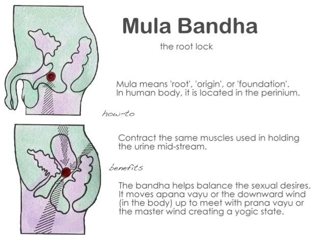 Mula Bandha Sex
