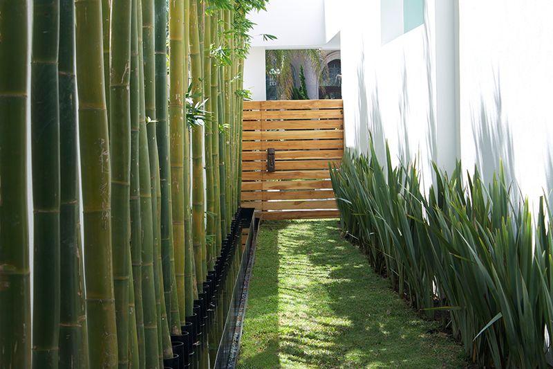 Espacios vivos bustamante jardin pinterest - Como impermeabilizar madera ...