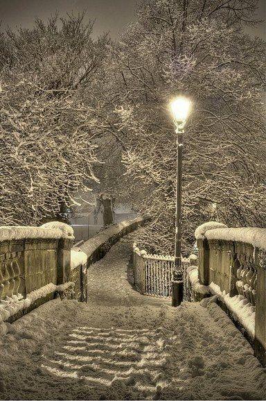 Naturbilder: schöne #Naturbilder #Natur #Winterlandschaft #Winter #Weg