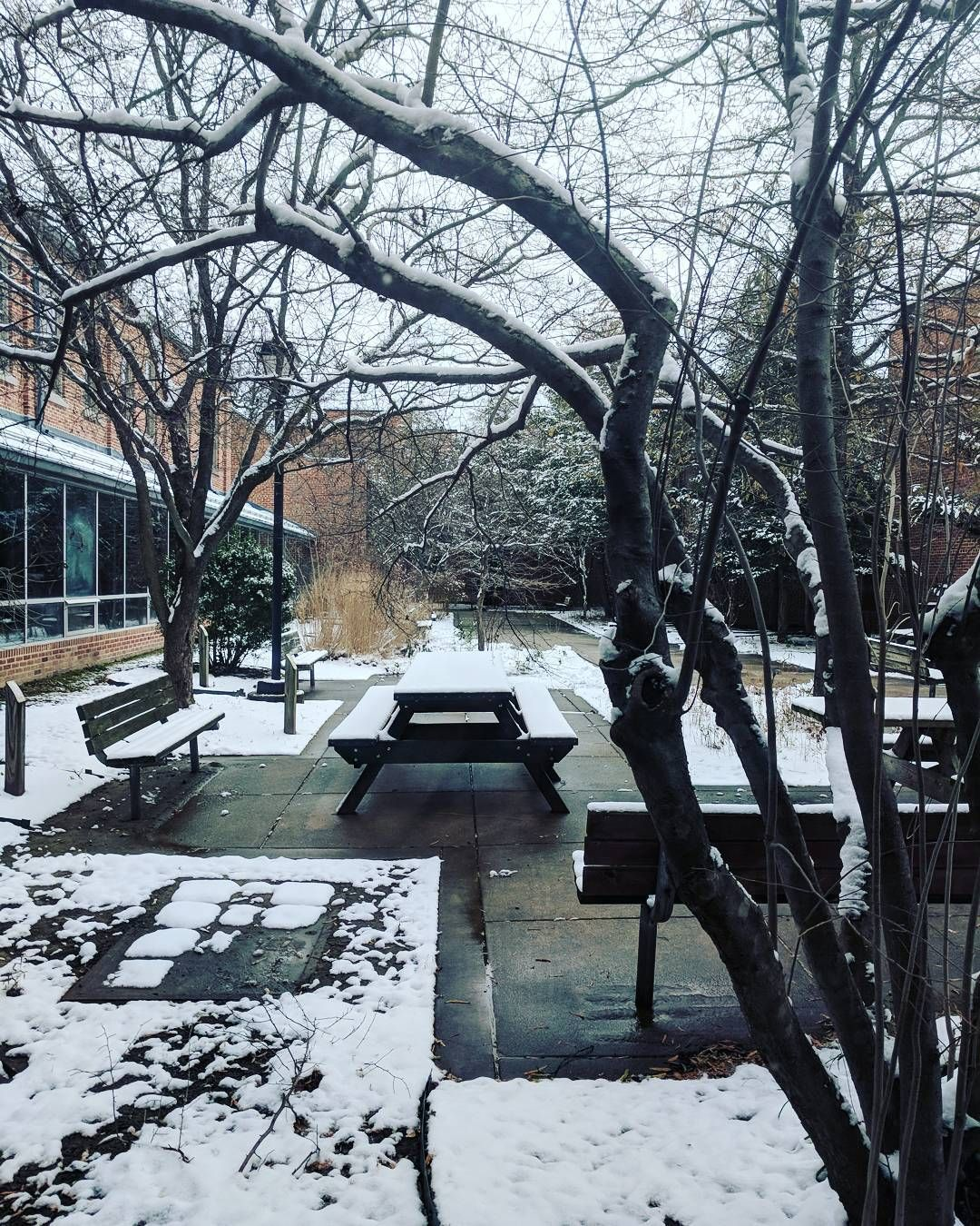 Affinity At Winter Park Home: Minor Snowfall. Work Courtyard. Winter Still Technically A
