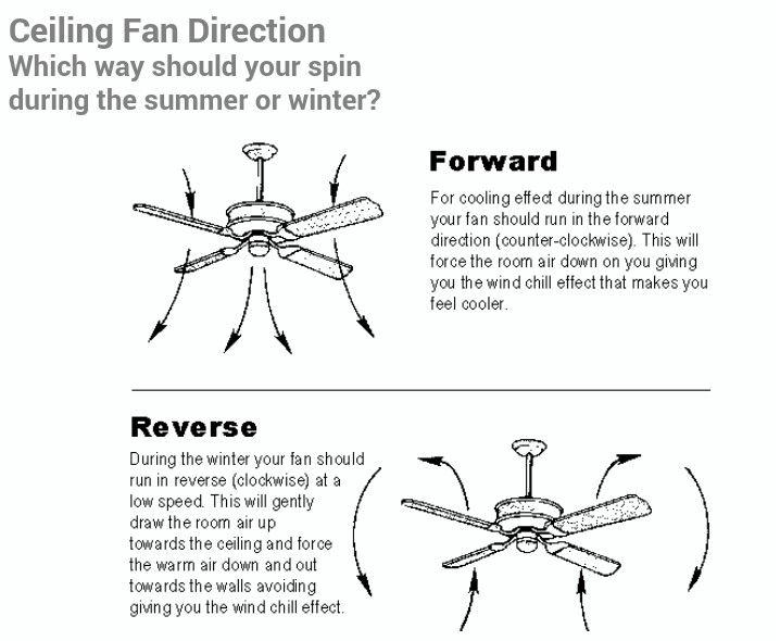 Ceiling Fan Direction In The Summer And Winter Which Way Should A Spin During Or