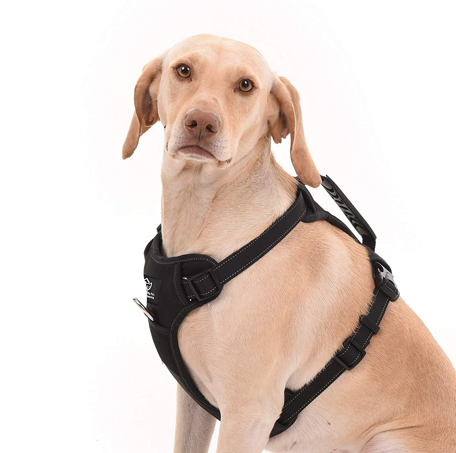 My Pets America Dog Harness For All Breeds No Pull Effect
