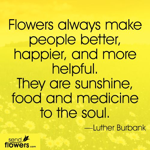 Love This Quote Flowers Are Indeed The Sunshine Food And Medicine To