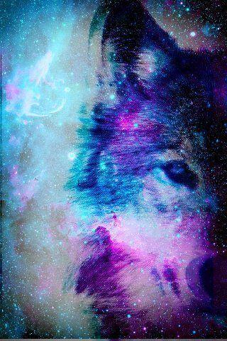 Galaxy Wolf Blue Violet Galaxy Wallpaper Galaxy Wolf Galaxy Art