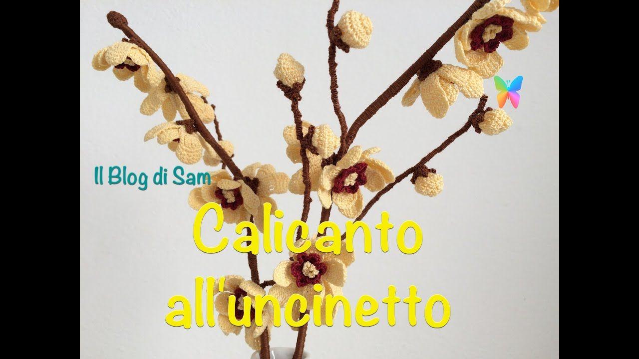 Calicanto Fiore D Inverno spiegazione del calicanto all'uncinetto | crochet flowers