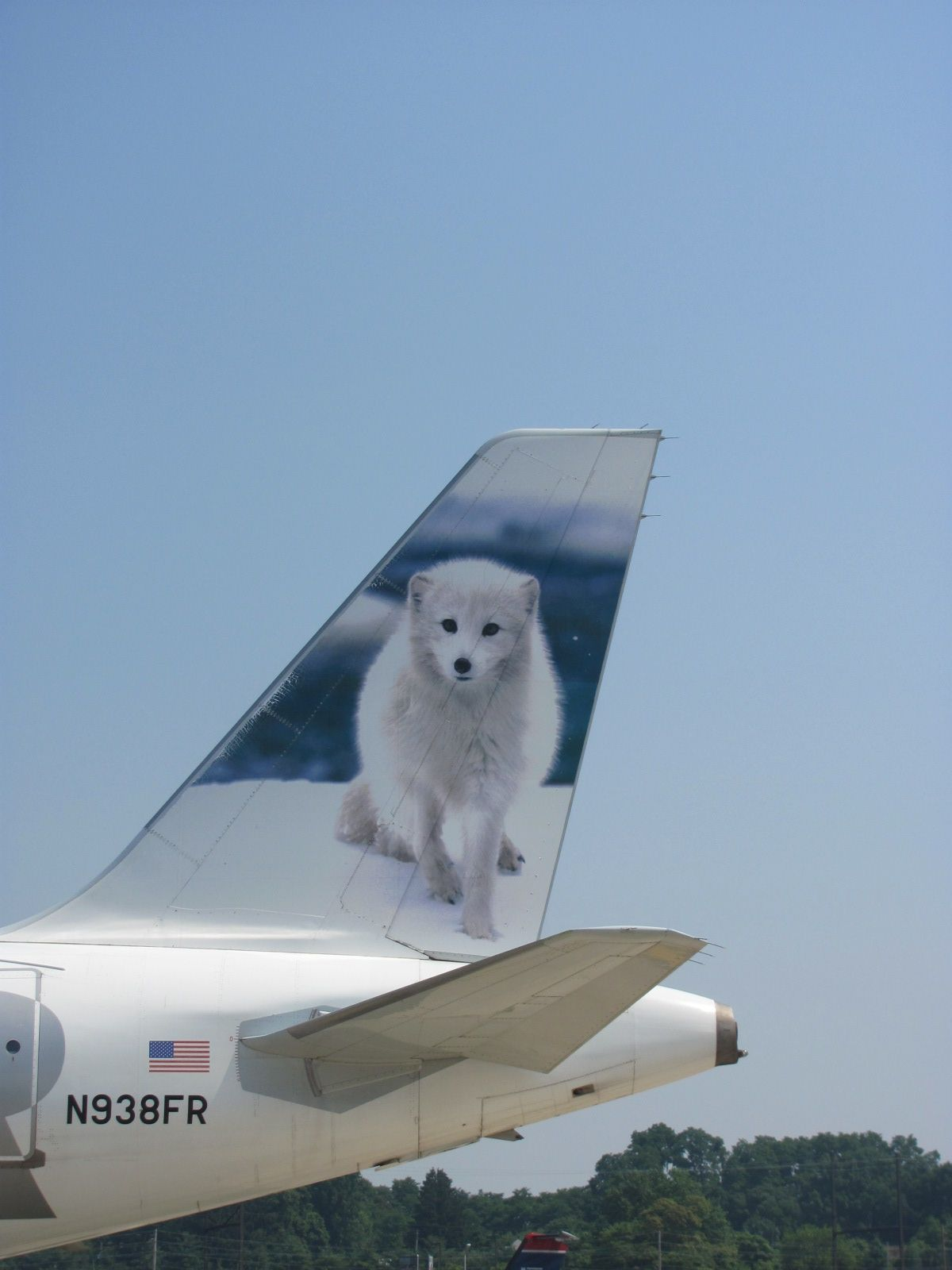 Frontier Airlines Misty the Arctic Fox Airlines (Past