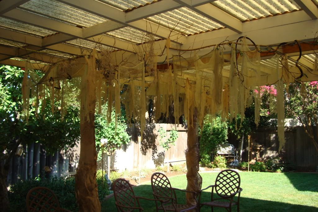 bayou party theme idea vines and mosscheesecloth hung from patio roof