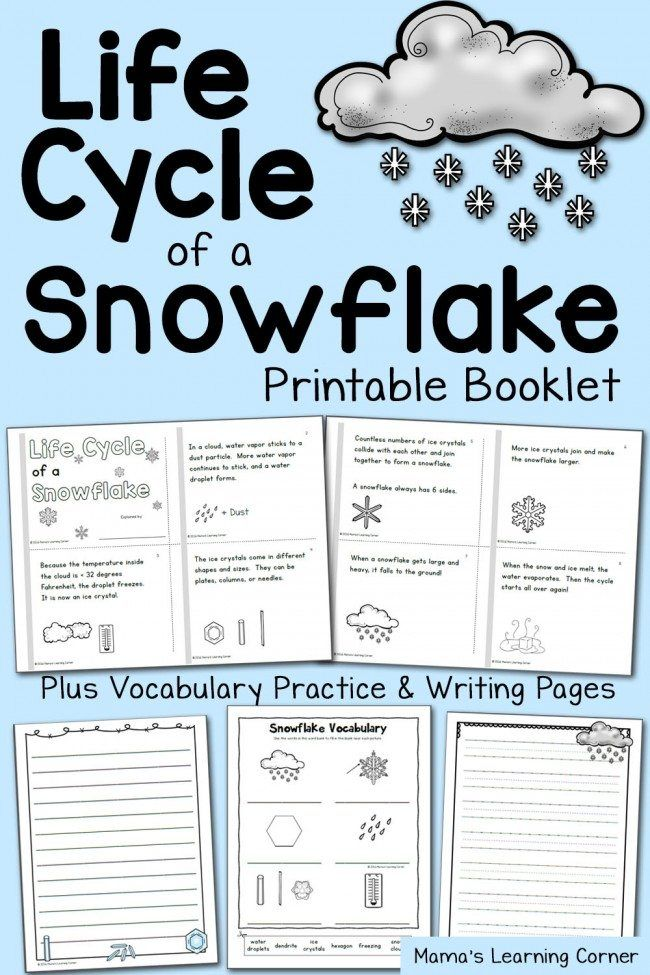 FREE Printable Life Cycle of a Snowflake Booklet and Worksheets – Snowflake Worksheets