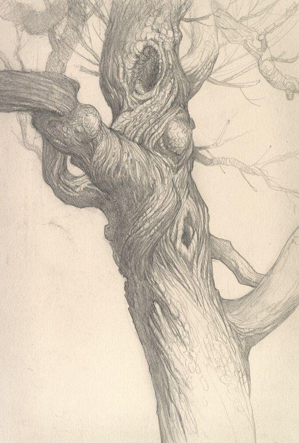 Justin Gerard Tree Drawings Pencil Tree Sketches Tree Drawing