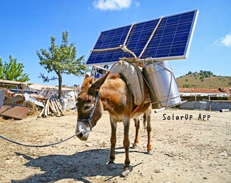 Pin by SolarUp on Introducing SolarUp the first user