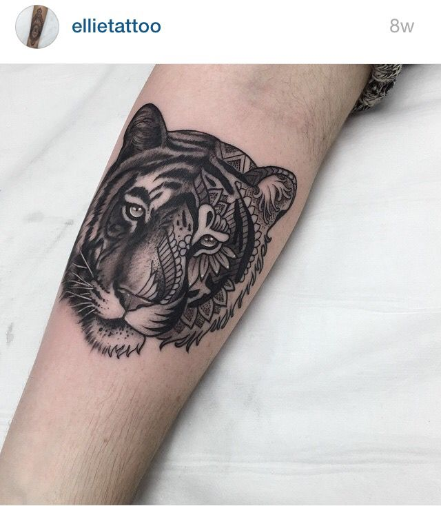 Tattoo womens hippie boho tiger lion quotes pinterest for Tiger tattoos for females