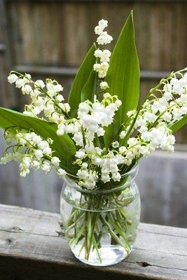 Bouquet Of Lily Of The Valley In Glass Vase At The Wood Handrail Lily Of The Valley Flowers Lily Of The Valley Valley Flowers