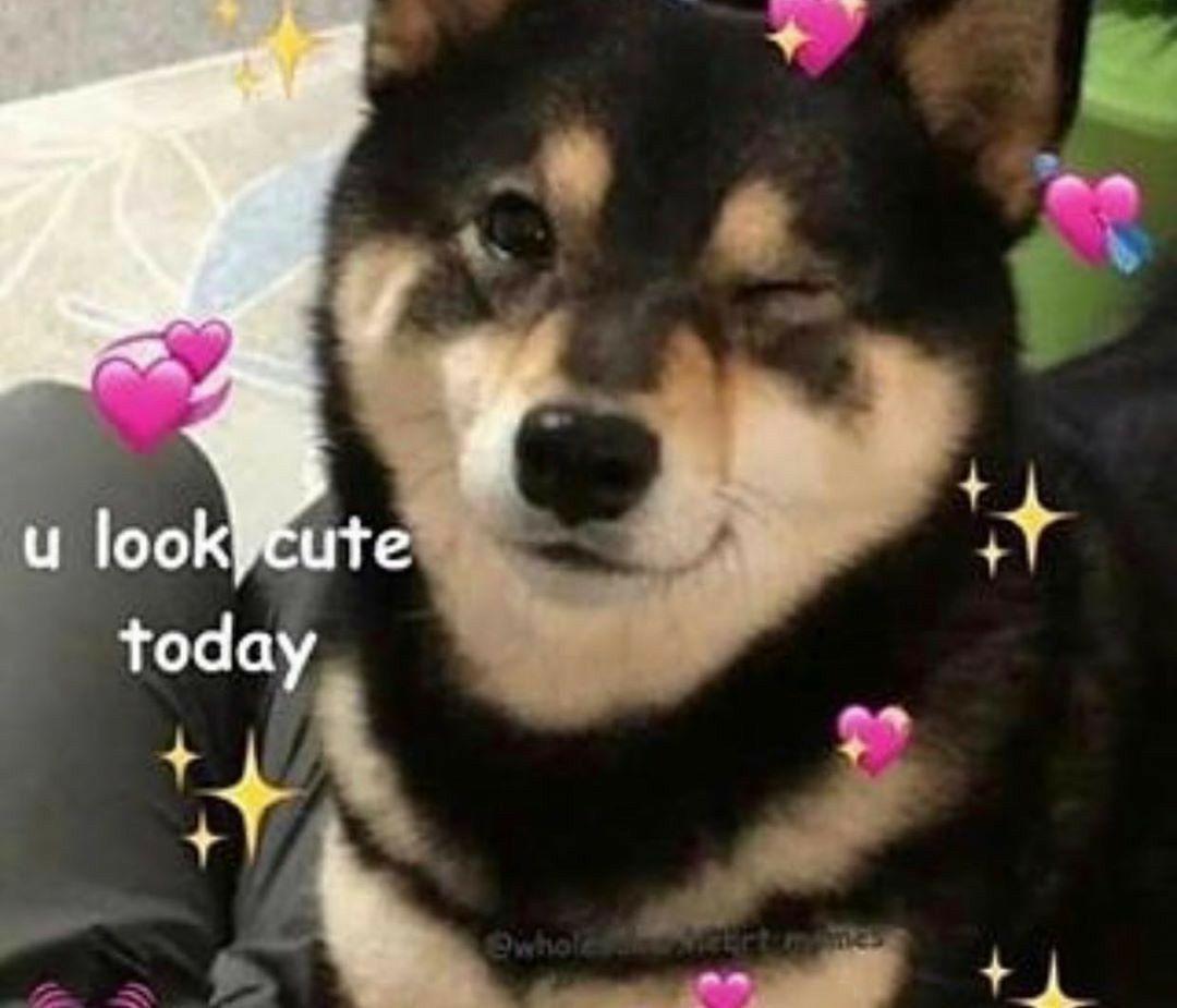 Lindo Amigo Todos Los Dias Cute Love Memes Cute Memes Flirty Memes