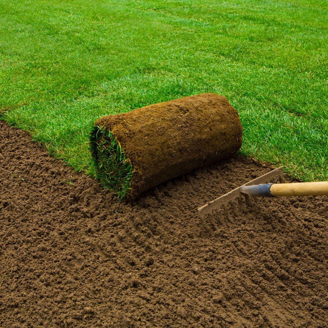 Ts6 Premium Blended Soil A Screened Manufactured Soil Certified To The Bs3882 Standard For Top Florida Landscaping Backyard Garden Backyard Garden Landscape