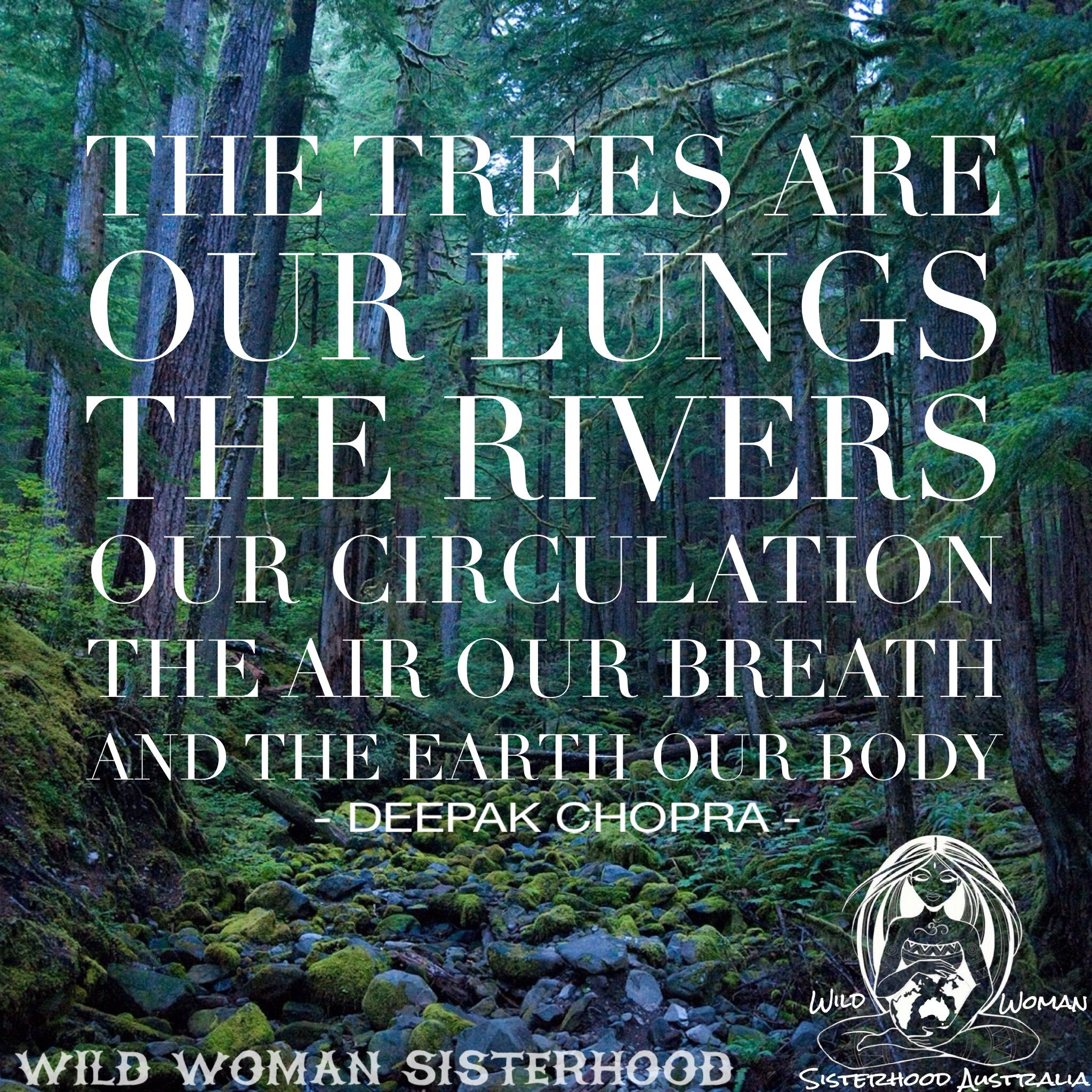 "Protect Nature Quotes: ""The Trees Are Our Lungs, The Rivers Our Circulation, The"