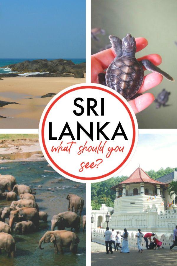 Travelling In Sri Lanka With A Baby #srilanka #