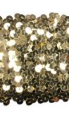 eight row stretch sequin trimming