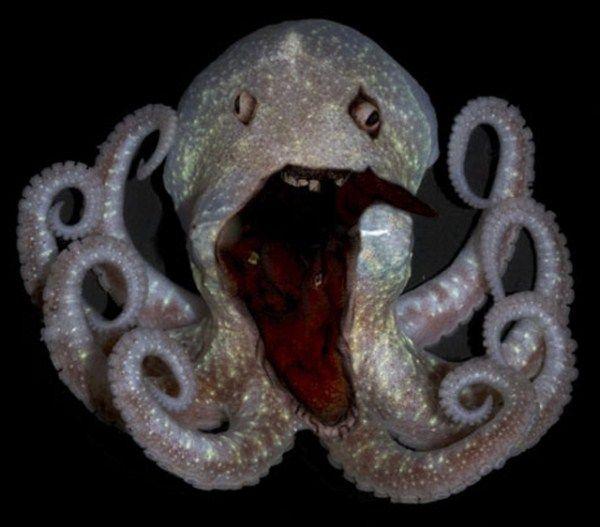Creepy deep sea creatures 39 pictures memolition for Deep sea fish