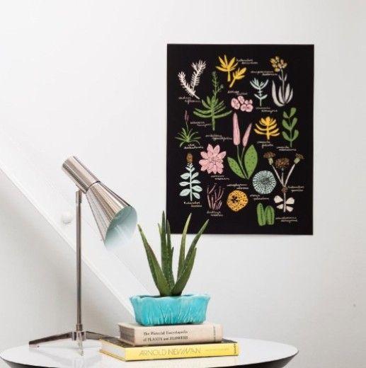 Nest Interiør | Succulent Poster