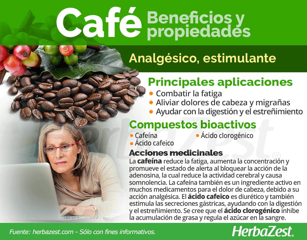 El Café Es Una De Las Hierbas Más Populares Del Mundo Consumida Principalmente Por Sus Propiedade Hierbas Curativas Propiedades Del Cafe Cafe Verde Beneficios