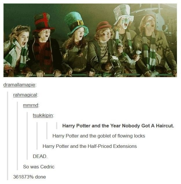 People Were Really Into Long Hair In Goblet Of Fire Harry Potter Tumblr Harry Potter Tumblr Posts Harry Potter Funny