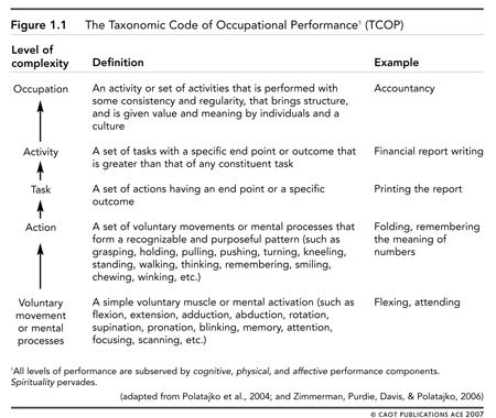 Tcop For Occupational Therapy  SchoolBased Occupational Therapy