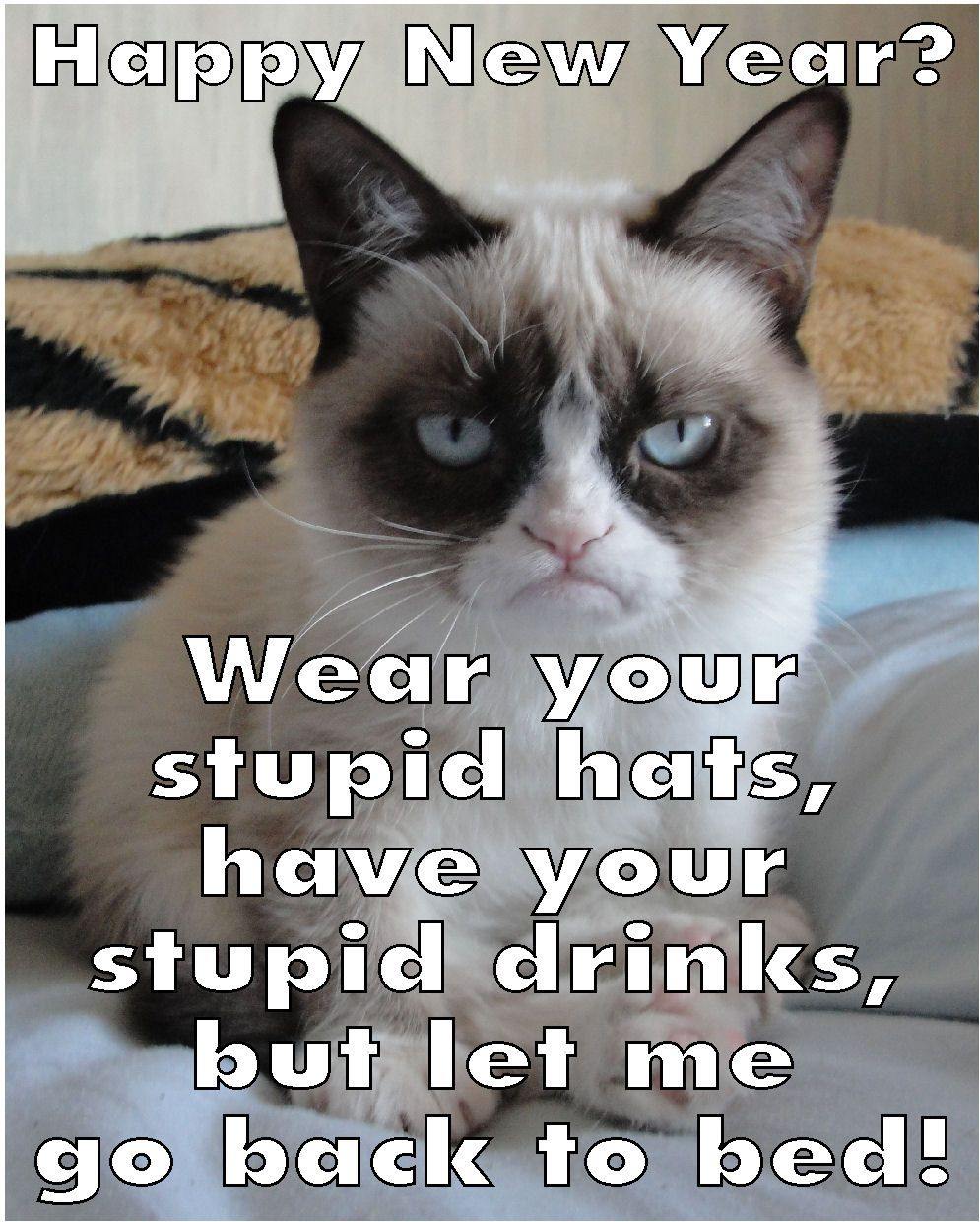 Grumpy Cat's New Year Plans Funny new years memes
