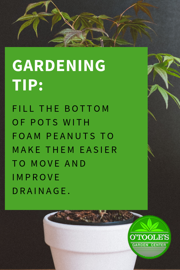 Gardening Tip Fill The Bottom Of Pots With Foam Peanuts To Make