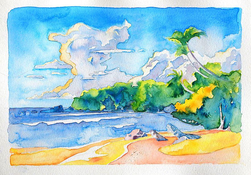 """Tobago, Watercolor, 11""""x8"""" $350 USD (Original). Available December 2013."""