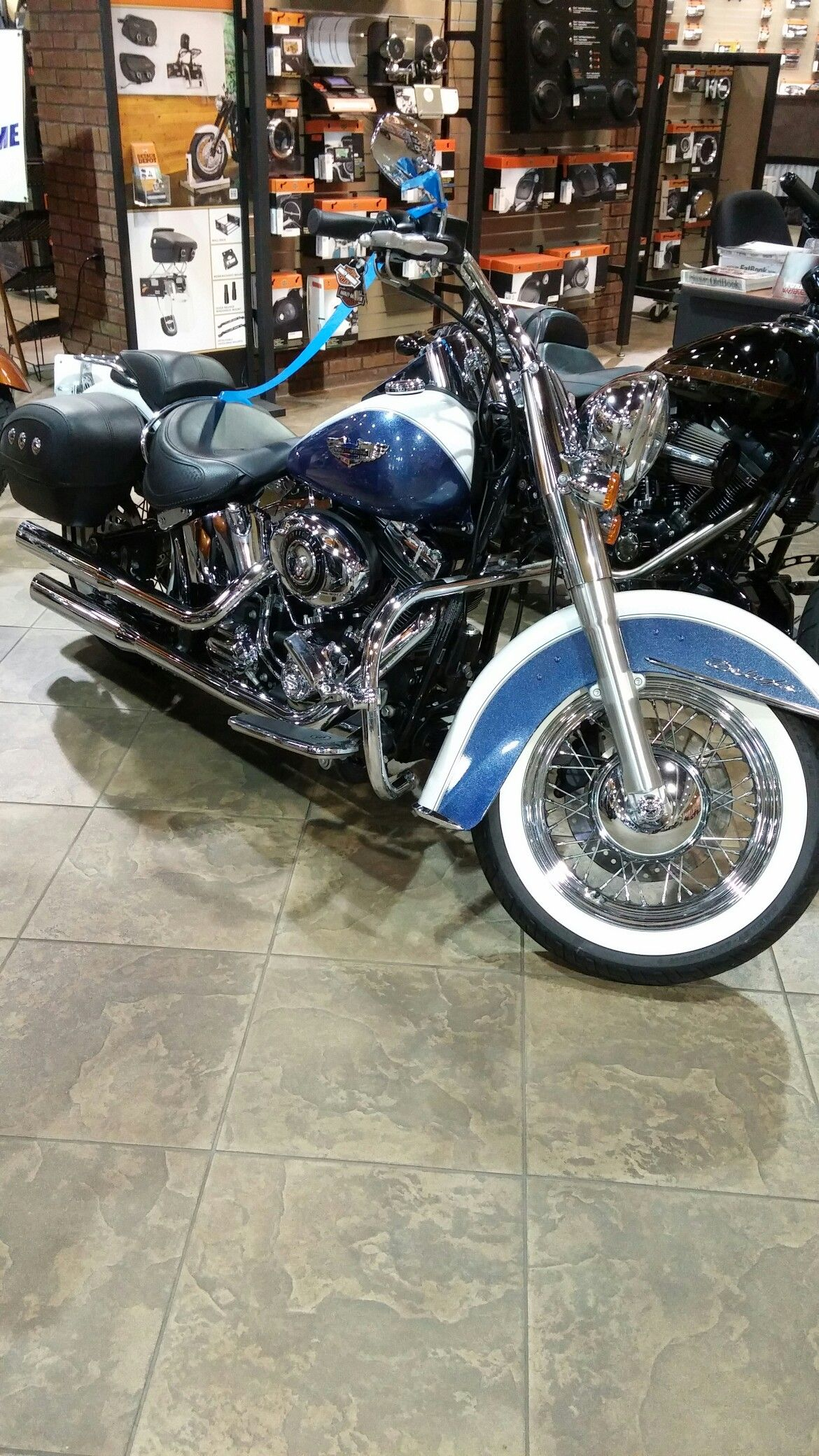 I ❤ this bike! Found it at the local Harley Davidson store. ...