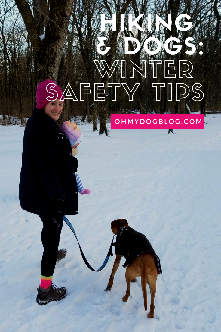 Hiking With Dogs Winter Safety Tips Hiking dogs, Winter