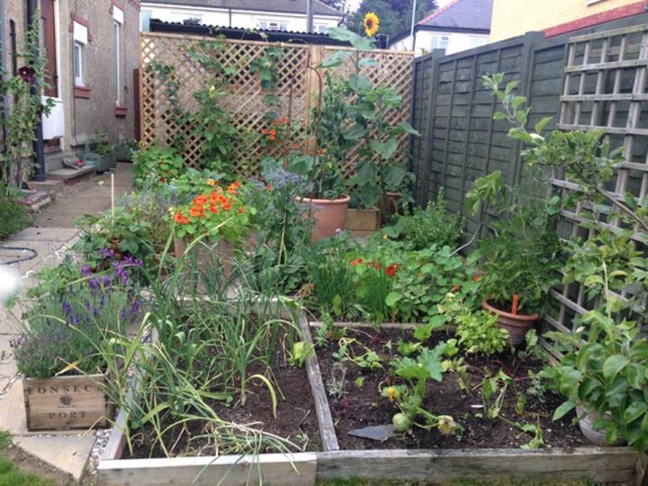 How I Saved Money Each Year Using The Garden Planner In 2020 Garden Planner Small Backyard Gardens Vertical Garden