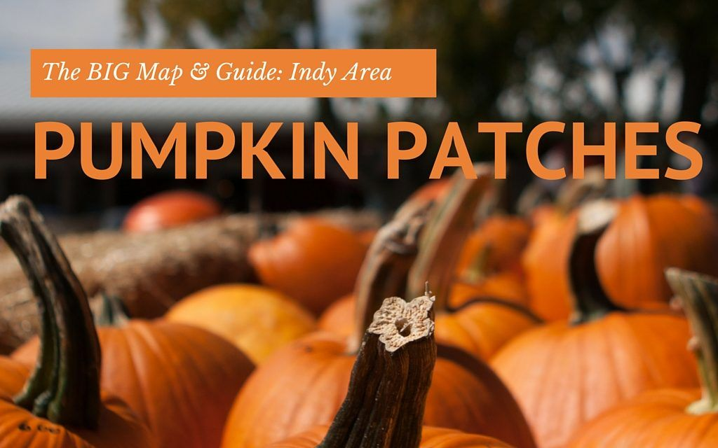 2020 Indianapolis Area Best Pumpkin Patches And Farms Best Pumpkin Patches Pumpkin Fall Family Fun