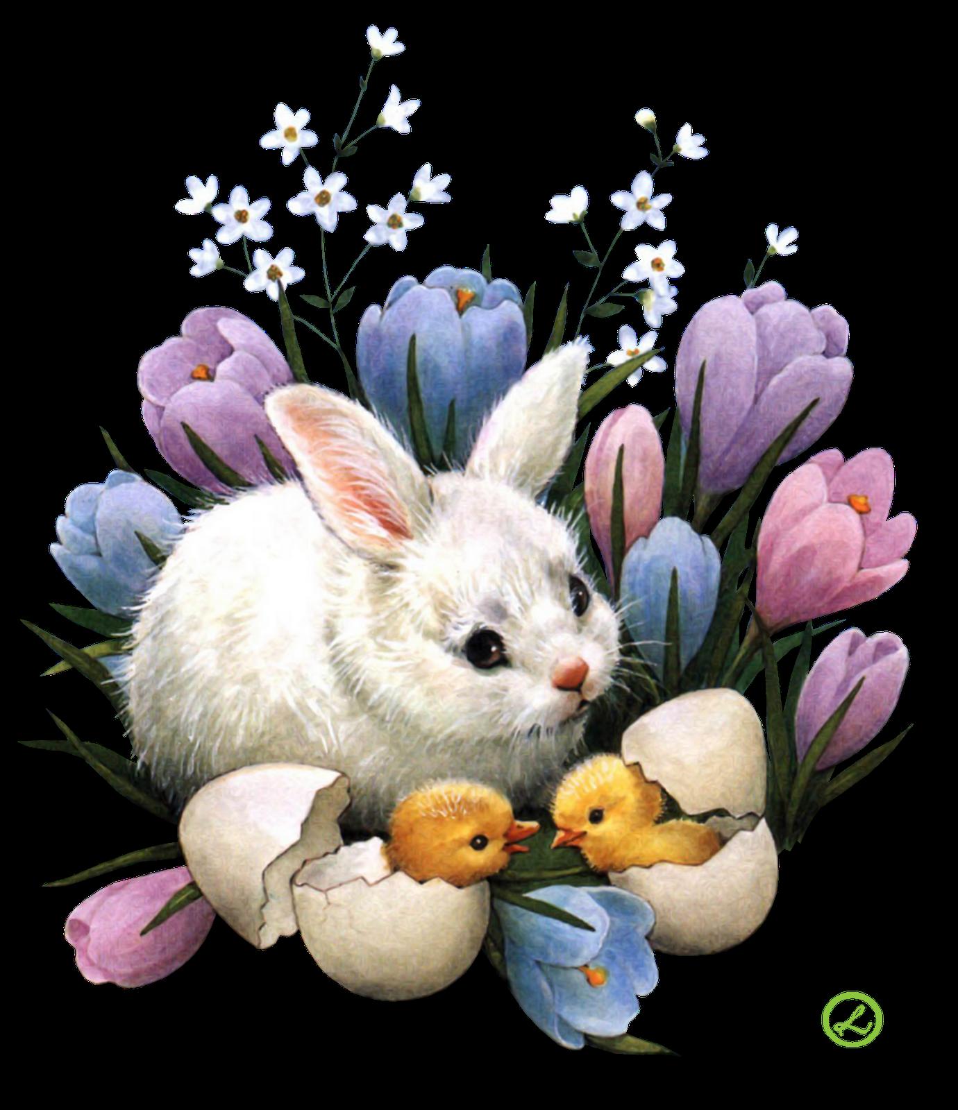 Открытка, открытка кролик пасхальный
