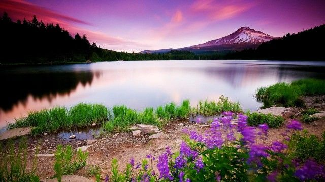 colorful nature wallpaper - Colorful Nature